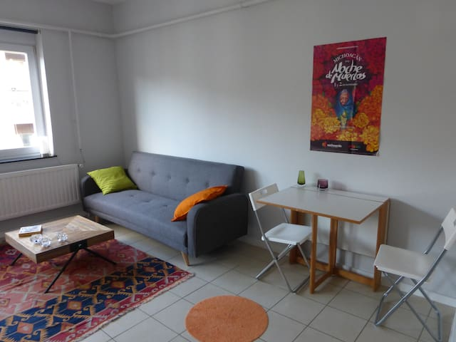 cozy, renovated, & central location! - Bruxelles - Appartement