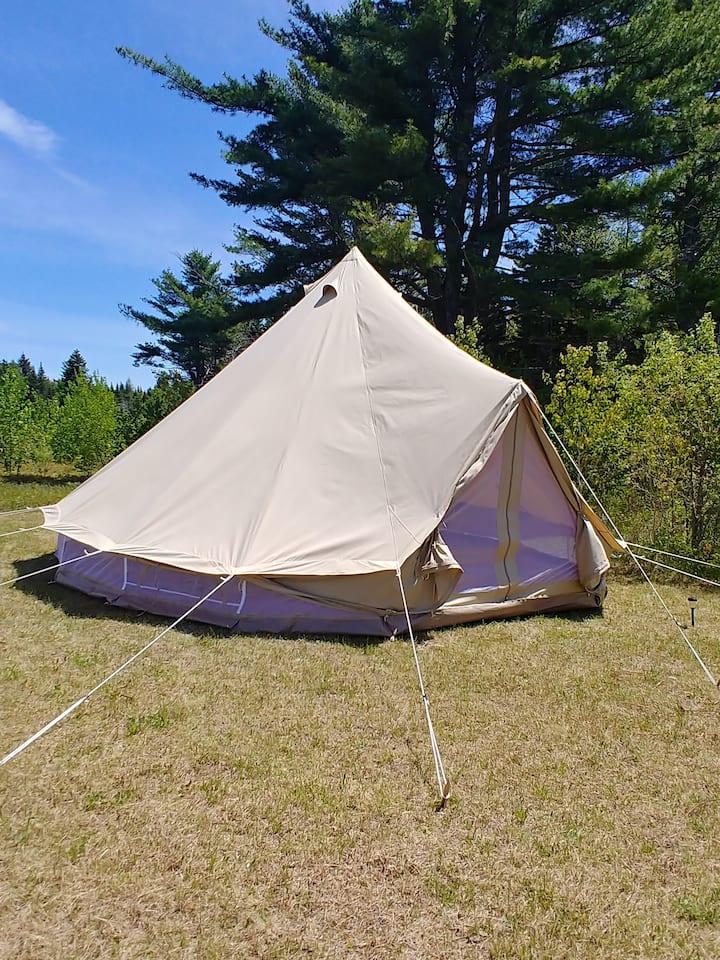 Woodland Oasis milkweed meadow Bell Tent