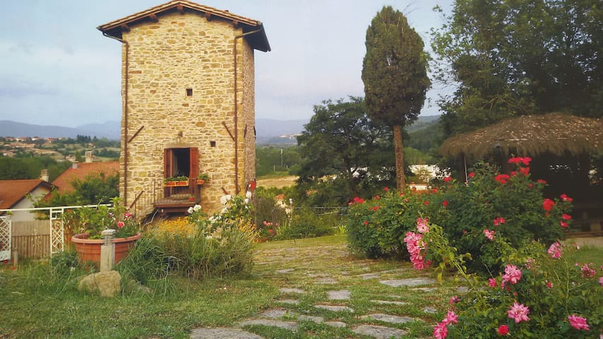 TORRE DEL DRAGO Near Florence - Strada - Apartment