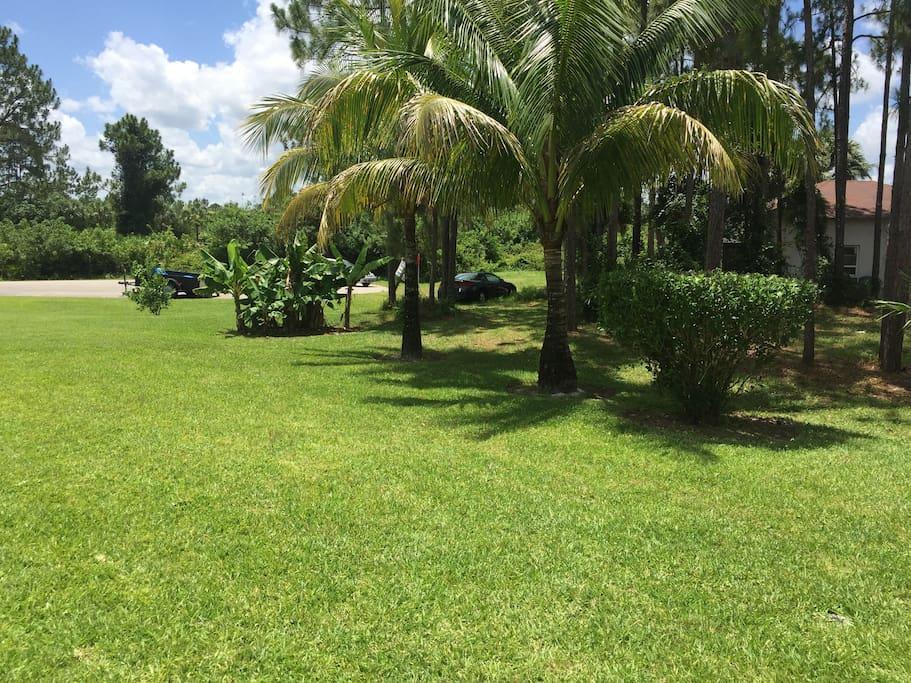 Nassau V - Landscape