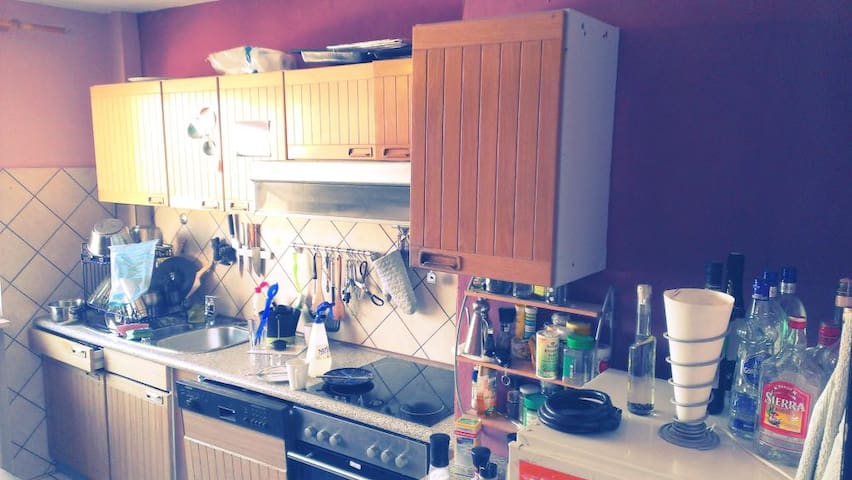 welcoming home in central position - Mannheim - Apartemen