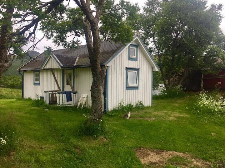 Hytte på gårdstun midt i Lofoten