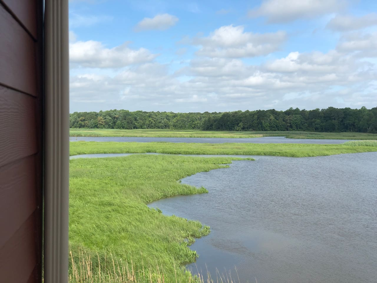 Great views of the marshes on Gray's Creek from the room!