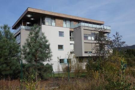 Luxusní soukromý resort Liberec - Liberec - Apartamento