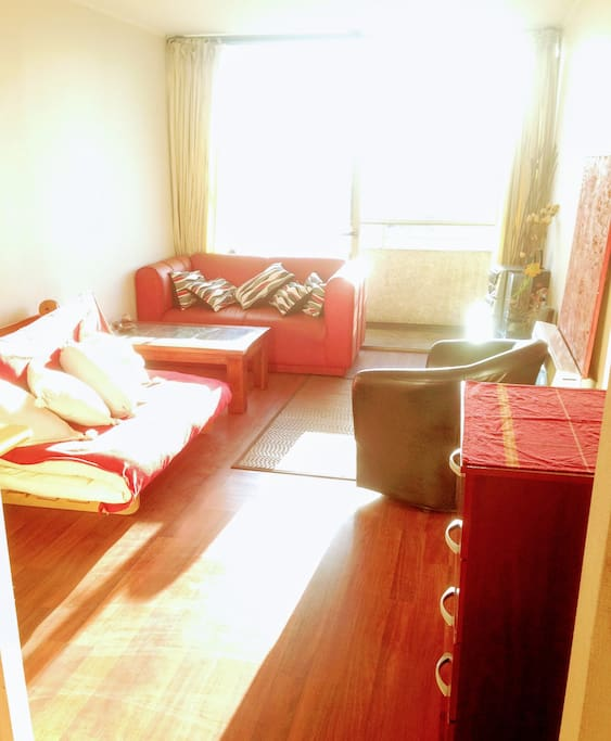 Bright, cozy and spacious Living with armchair, sofa 2 bodies and large expandable futon for 2 adults or 3 children.