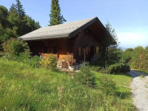 Gemütliches Holzhaus in den Bergen