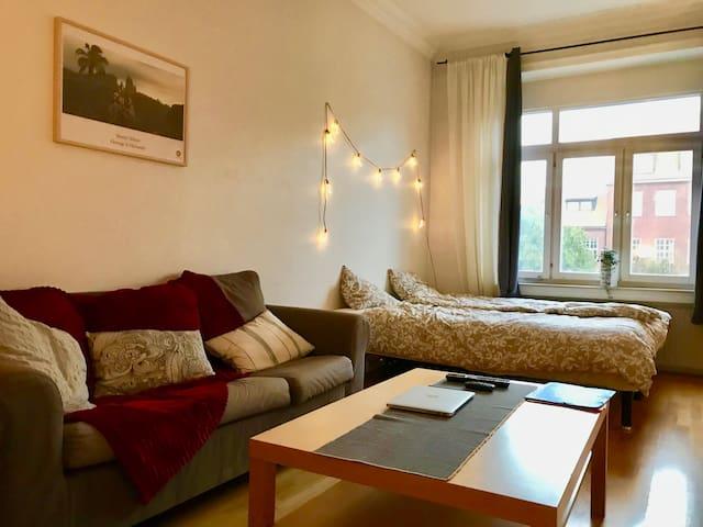 Cozy apartment in Gothenburg City centre