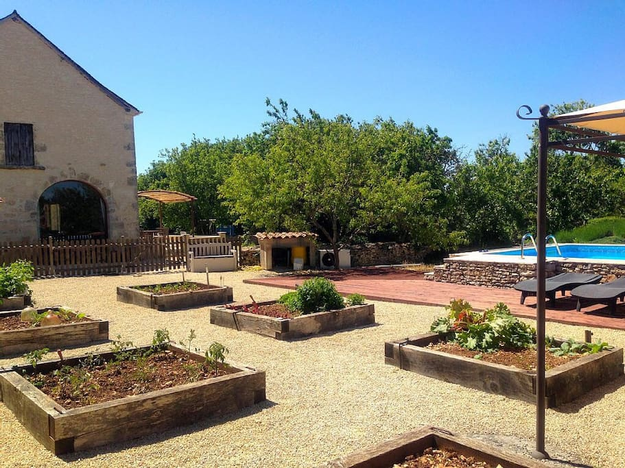 The swimming pool and raised garden beds