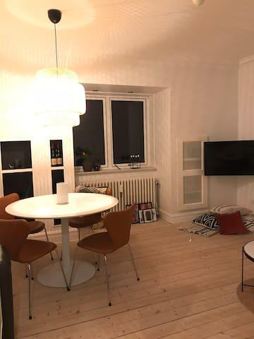 Hyggelig lejlighed med sengeplads til 2 personer