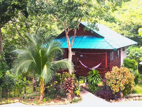 The Hill Village,Baan Phupa, Koh Phangan, TNP