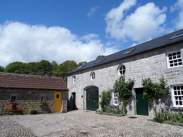 The Coach House, Leitrim Ireland - Ballinamore - Apartmen