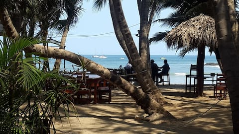 Hotel La Palapa en la playa #3