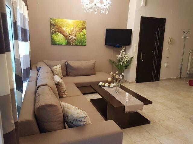 Maria's newly renovated apartment Preveza (39895)