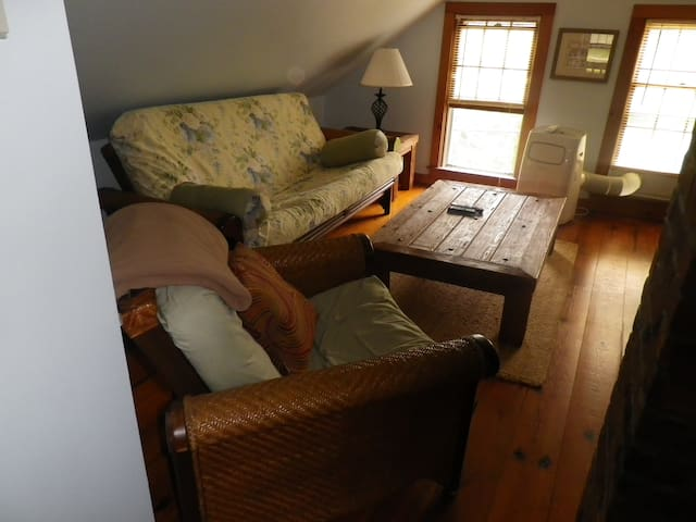 Double Futon Couch in Living Area