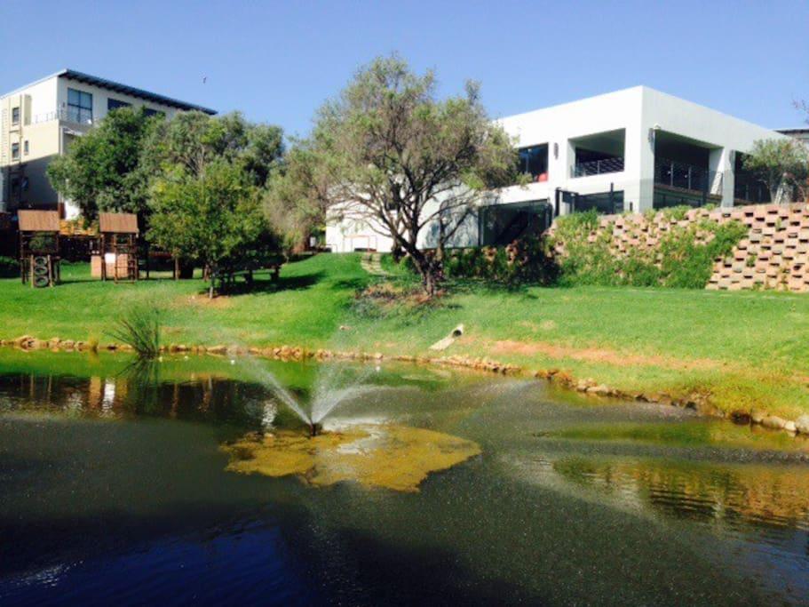 Pond, braai area