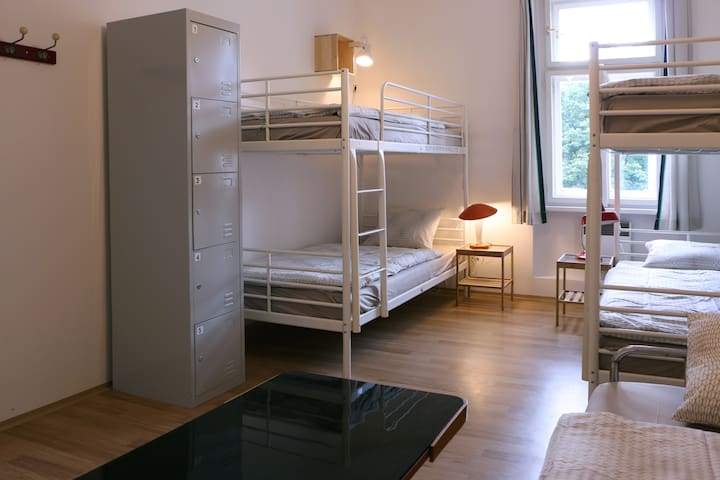Olga room-close to city centre,view to Vitkov hill
