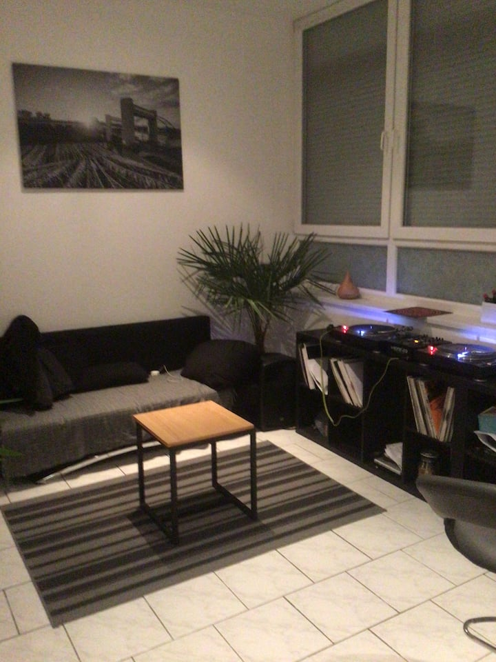 1 room apartment  in the middle of mannheim