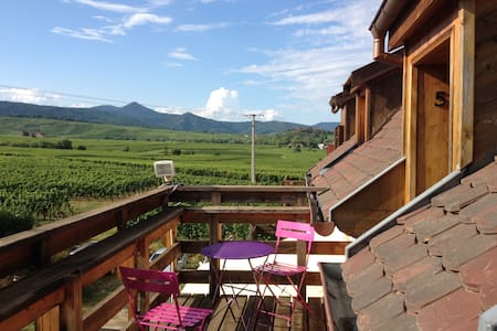 Duplex with panoramic view in the Greiner Winery