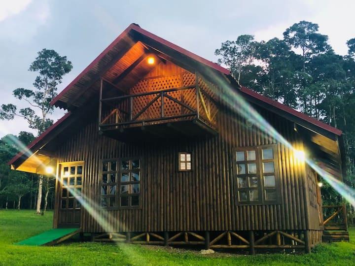 Cabaña rodeada de naturaleza en San Carlos