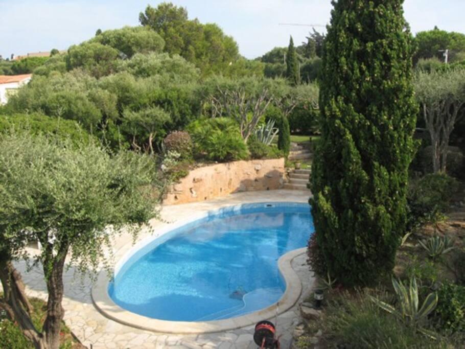 piscine vue de la terrasse du premier