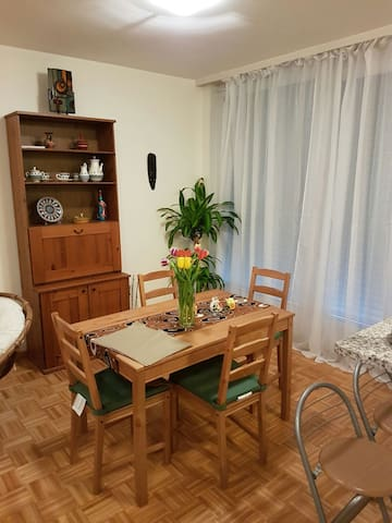 fully equipped 1 bedroom for 3 person s - Vernier - Byt