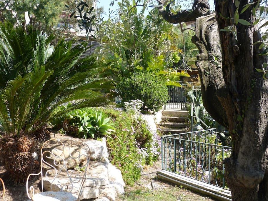 Jardin paysager avec des espaces de détente