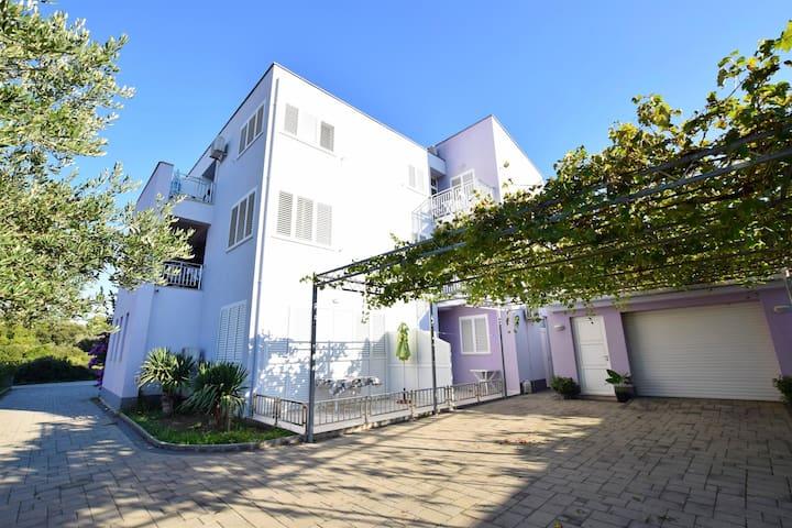 Apartment Danijela (20121-A2) - Bibinje - Huoneisto