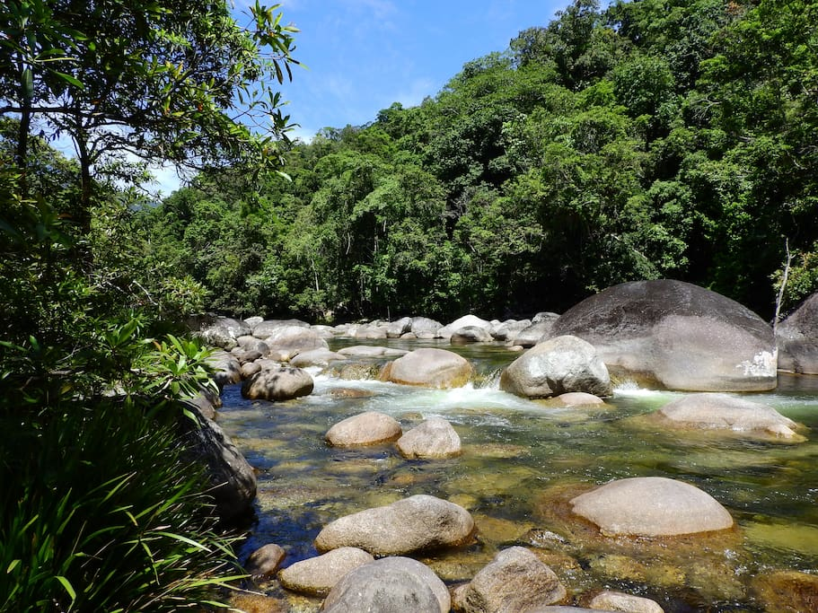 Beautiful, iconic, breathtaking! Mossman Gorge is five minutes from home and a must-see!