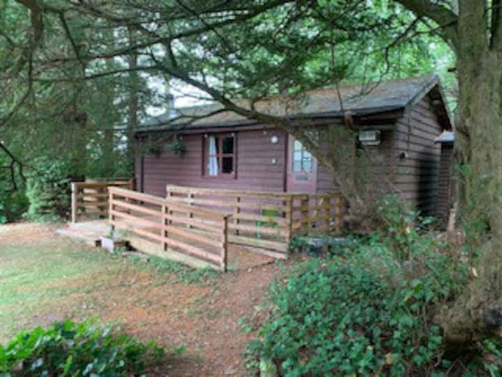 Timber cabin in private woodland - sleeps 4