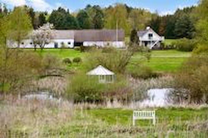 I smuk og rolig natur ved Ebeltoft - Ebeltoft - Lejlighed