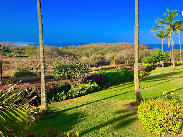 MOLOKAI, TROPICAL  OCEAN VIEW CONDO