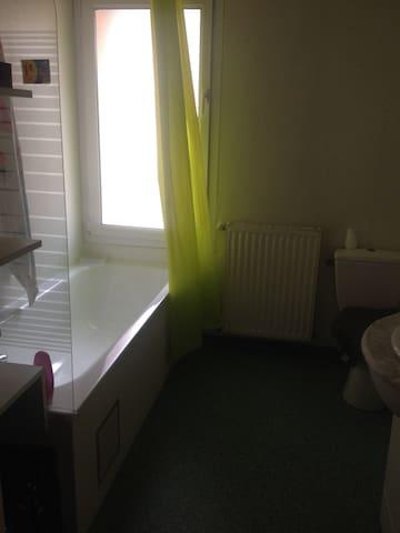 Appartement spacieux et calme - Gaillac - Appartement