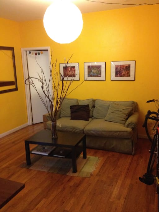 Shared living room (room to store your bike)