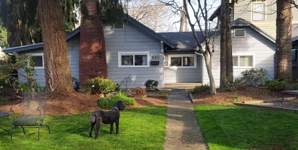 Charming Cottage in Downtown Salem