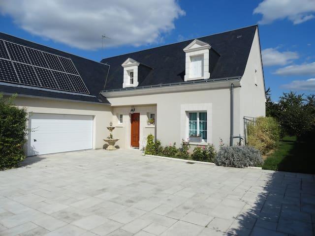 maison de caractére agréable a vivre avec cheminée - Saint-Cyr-sur-Loire - Flat