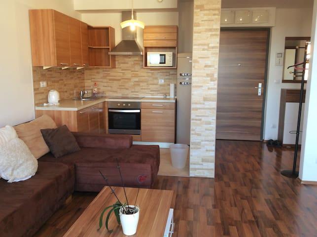 Corvin Promenade 1-bed (gym, spa, restaurants)