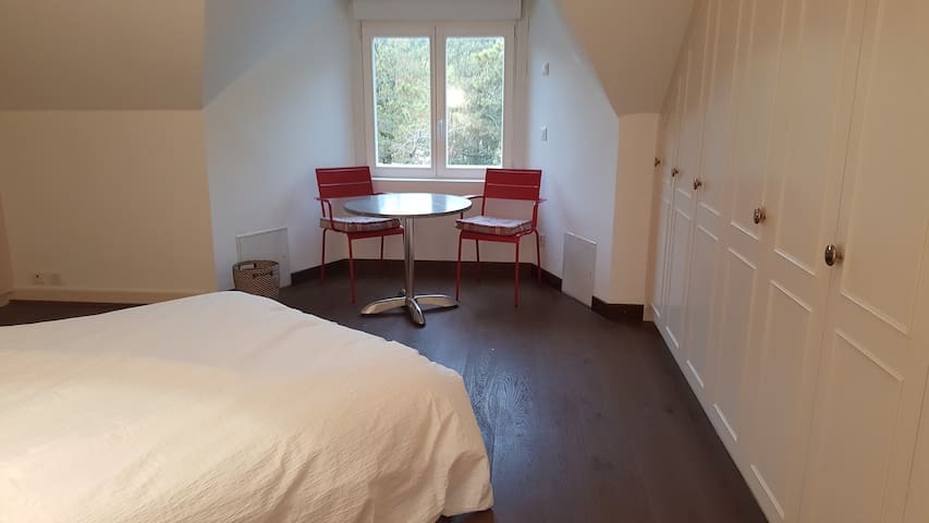 Large room near Lausanne with nice view - Belmont-sur-Lausanne - บ้าน