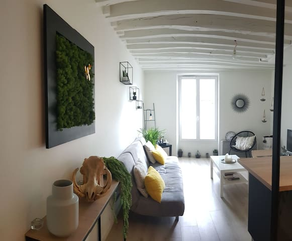 Petit appartement lumineu et recement renové