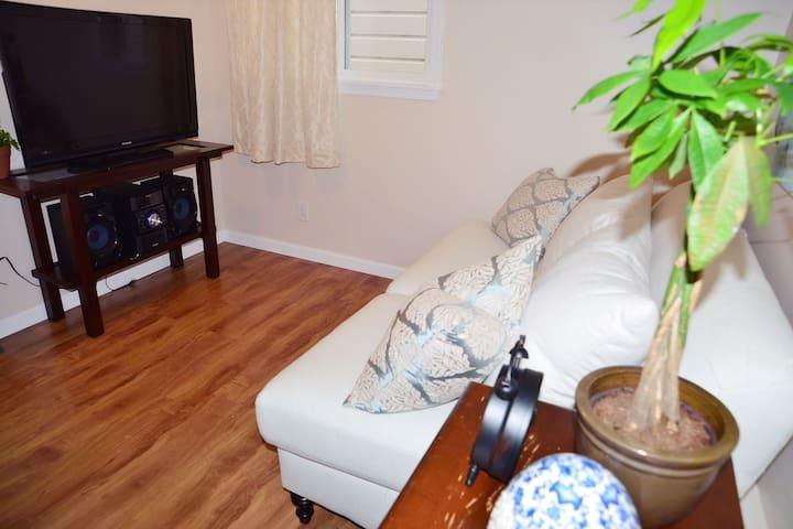 Living room facing TV.