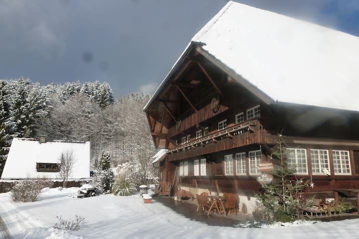 Ferienwohnung Büchereck - Gutach (Schwarzwaldbahn)