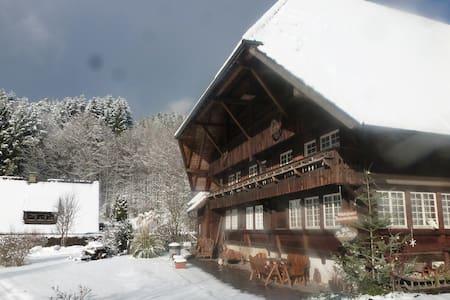 Ferienwohnung Büchereck - Gutach (Schwarzwaldbahn) - Apartmen