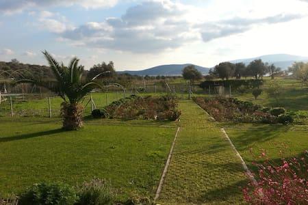 Özbek  Çiftlik Evi - Urla - Bed & Breakfast