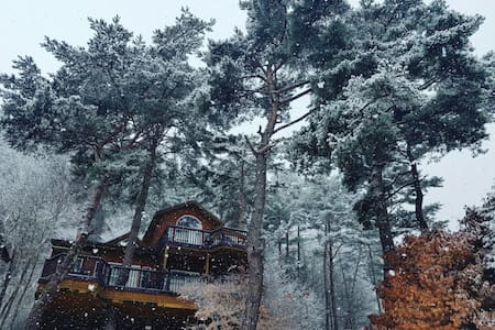 Beautiful forest Pension - Yongpyeong-myeon, Pyeongchang-gun