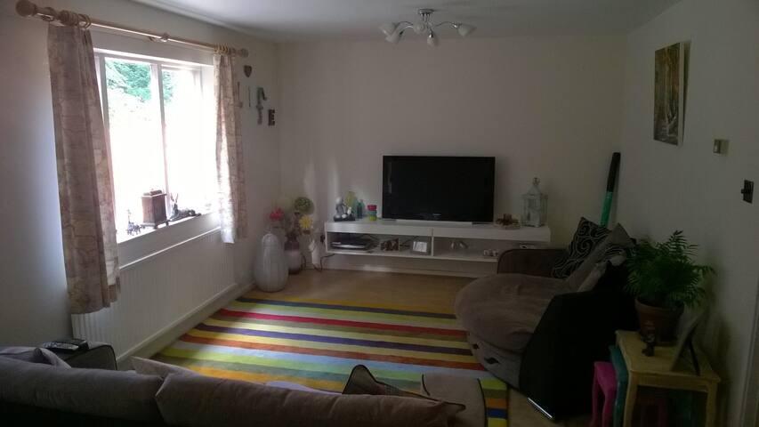 Spacious bright single room