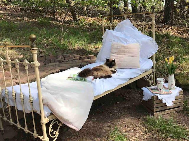 Sonniges Zimmer, am Wald m. Terasse u. Entspannung
