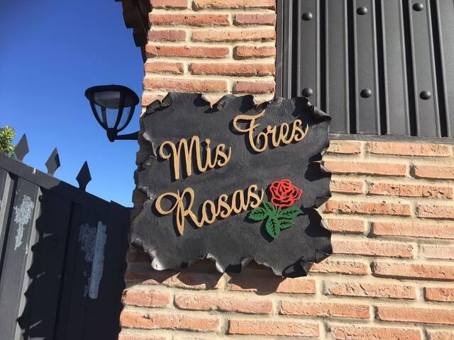 Mis Tres Rosas