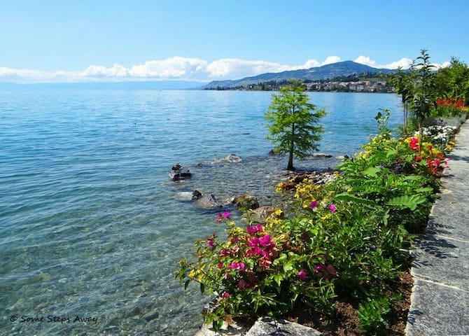 BONNE VACANCE une jolie chambre - Montreux - Appartement