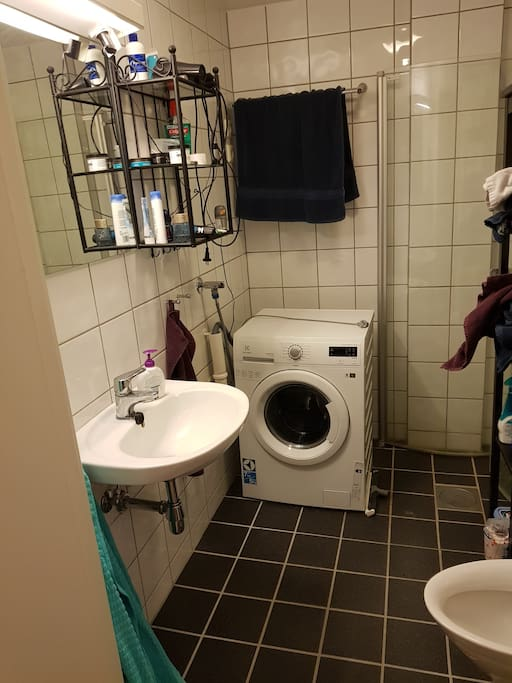 Bathroom w shower and combined washing machine / dryer