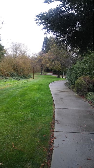 Walking path to grocery store and shops