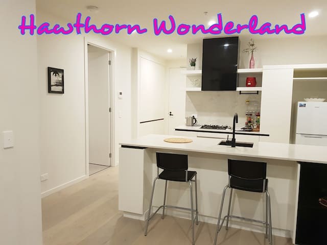 *SPECIAL OFFER *2BR+2BATH APARTMENT HAWTHORN